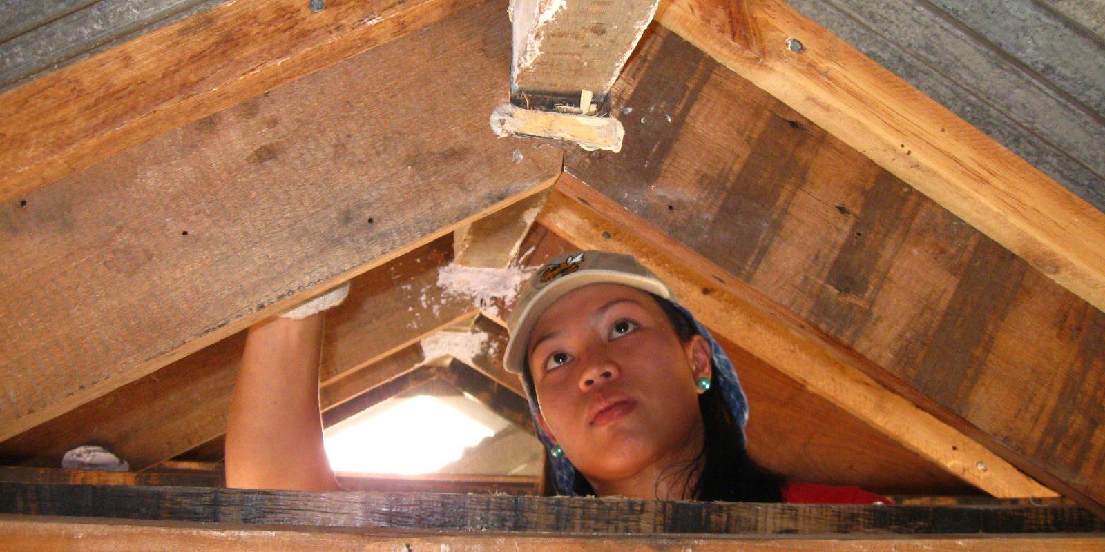 Workshops Carpentry 2